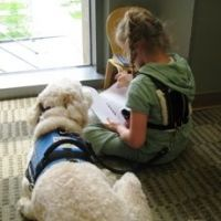 Australian Labradoodle Sitting next to Girl